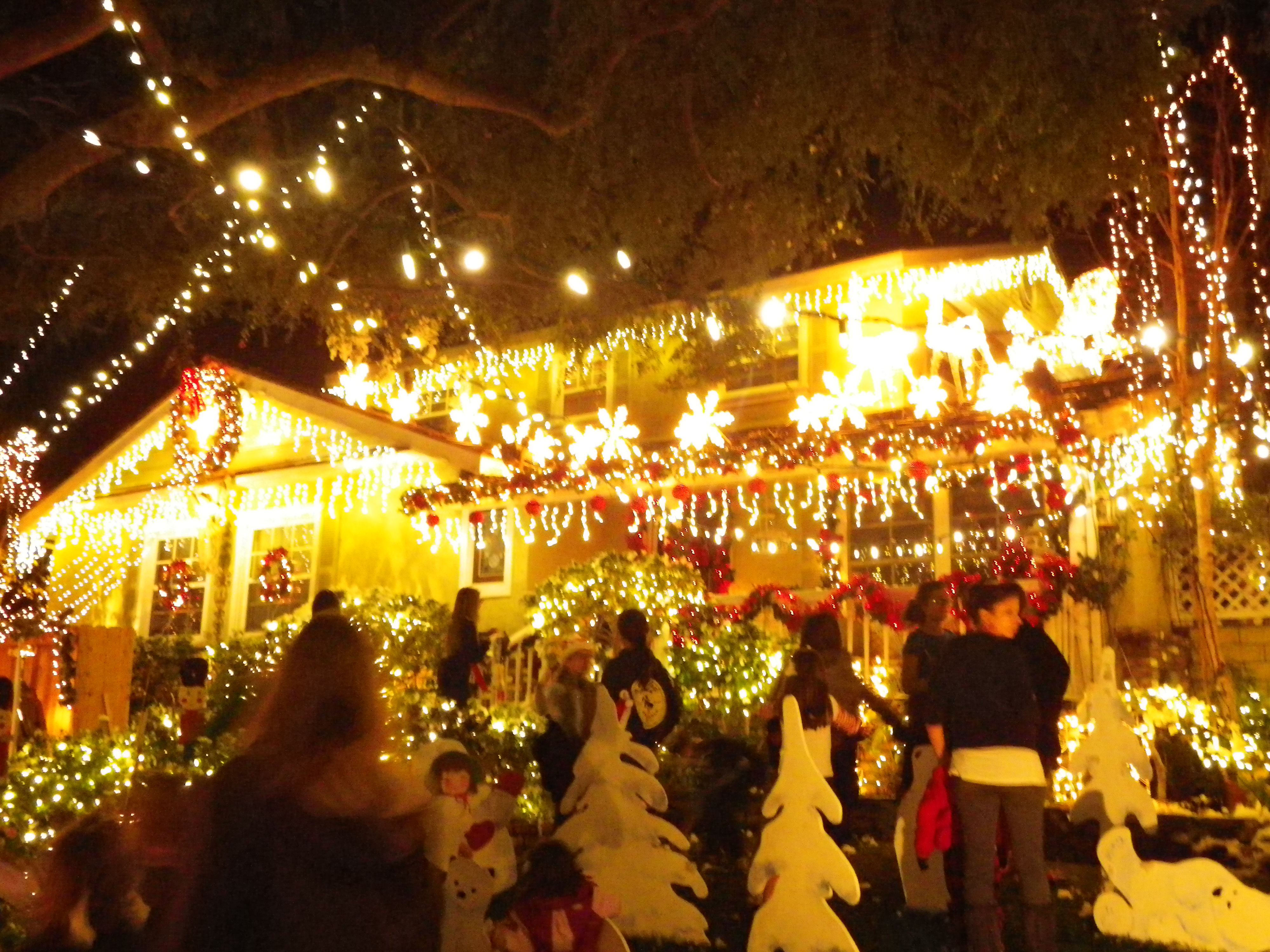 my friends and i definitely felt the spirit of the holidays and enjoyed exploring something one doesnt see everyday and what more - Christmas Lights In Torrance